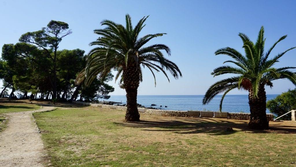 Lokrum island, Croatia, Lokrum with kids, palm trees, sea, beach, best croatian islands
