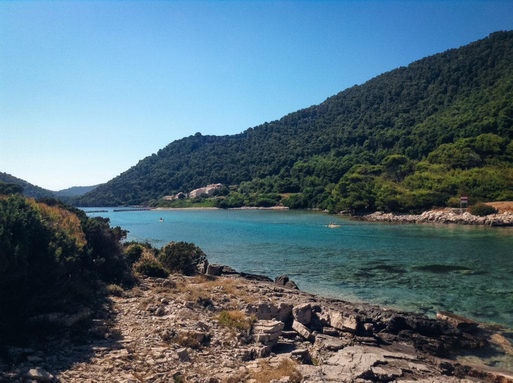 Mljet, forest, croatia, island-hopping, best islands in Croatia